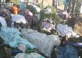 أسوشيتيد برس: قوات إريترية نفذت مجزرة مروعة في تيجراي