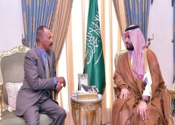 بعد الكويت وقطر والأردن.. بن سلمان يعرض مبادرته الخضراء على جيبوتي وإريتريا