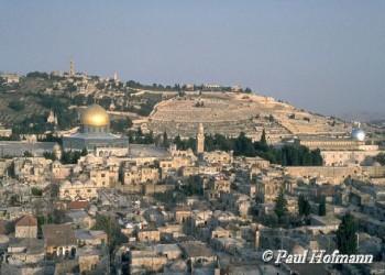 فلسطين.. قضية القضايا