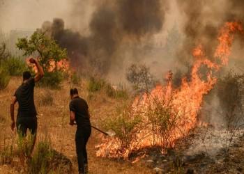 تركيا: سيطرنا على غالبية الحرائق التي اندلعت قرب مواقع سياحية