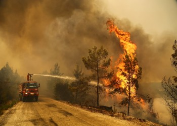 بيان تضامني نادر من مصر لتركيا في مواجهة حرائق الغابات
