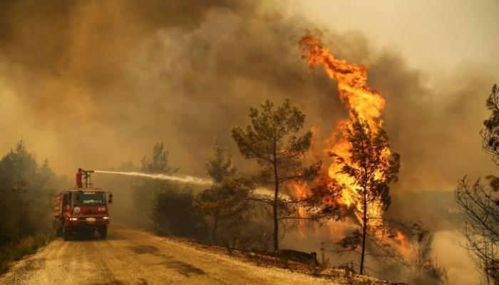 قطر ترسل فريق إنقاذ لدعم تركيا في انتشال ضحايا حرائق الغابات