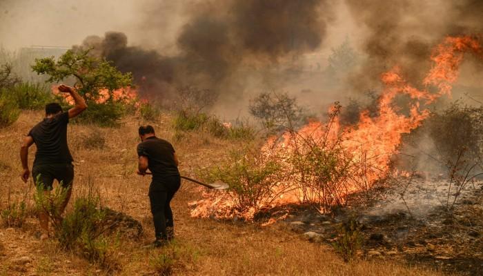 الأزهر يقدم التعازي بضحايا حرائق الغابات في تركيا