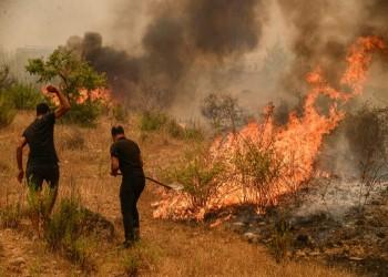 ارتفاع قتلى حرائق الغابات في تركيا إلى 8
