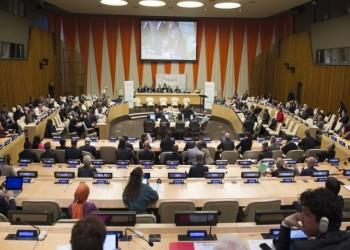 بدعم عربي وإسلامي.. إسرائيل عضو للمرة الأولى بالمجلس الاقتصادي الأممي