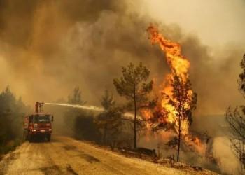 «الإرهاب البيئي» وحرائق الغابات في تركيا والعالم