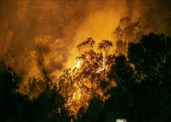 تونس تسجل 155 حريقا خلال الـ36 ساعة الماضية