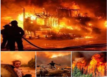 حرائق العالم ونيران السياسة!