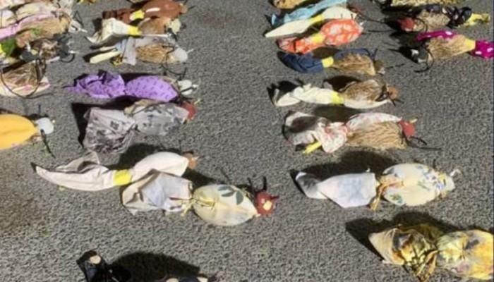 دبي.. ضبط 64 صقرا صيادا قبل تهريبها داخل شاحنة خضروات (صور)